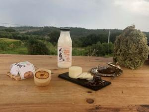 Queijo e Iogurte Kefir